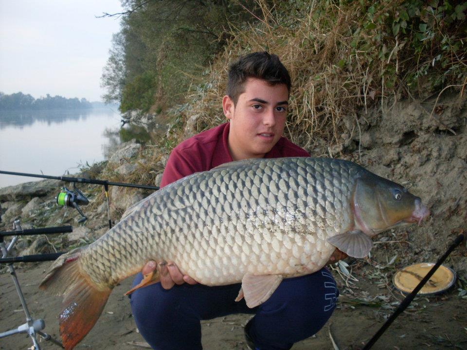 Luca Bertoli