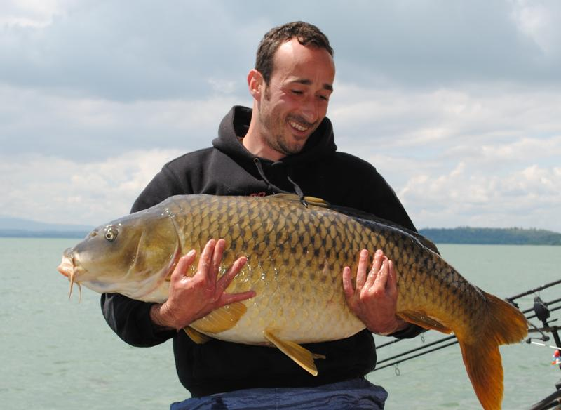 Il lago trasimeno carpfishing italia la tua rivista for Grosso pesce di lago
